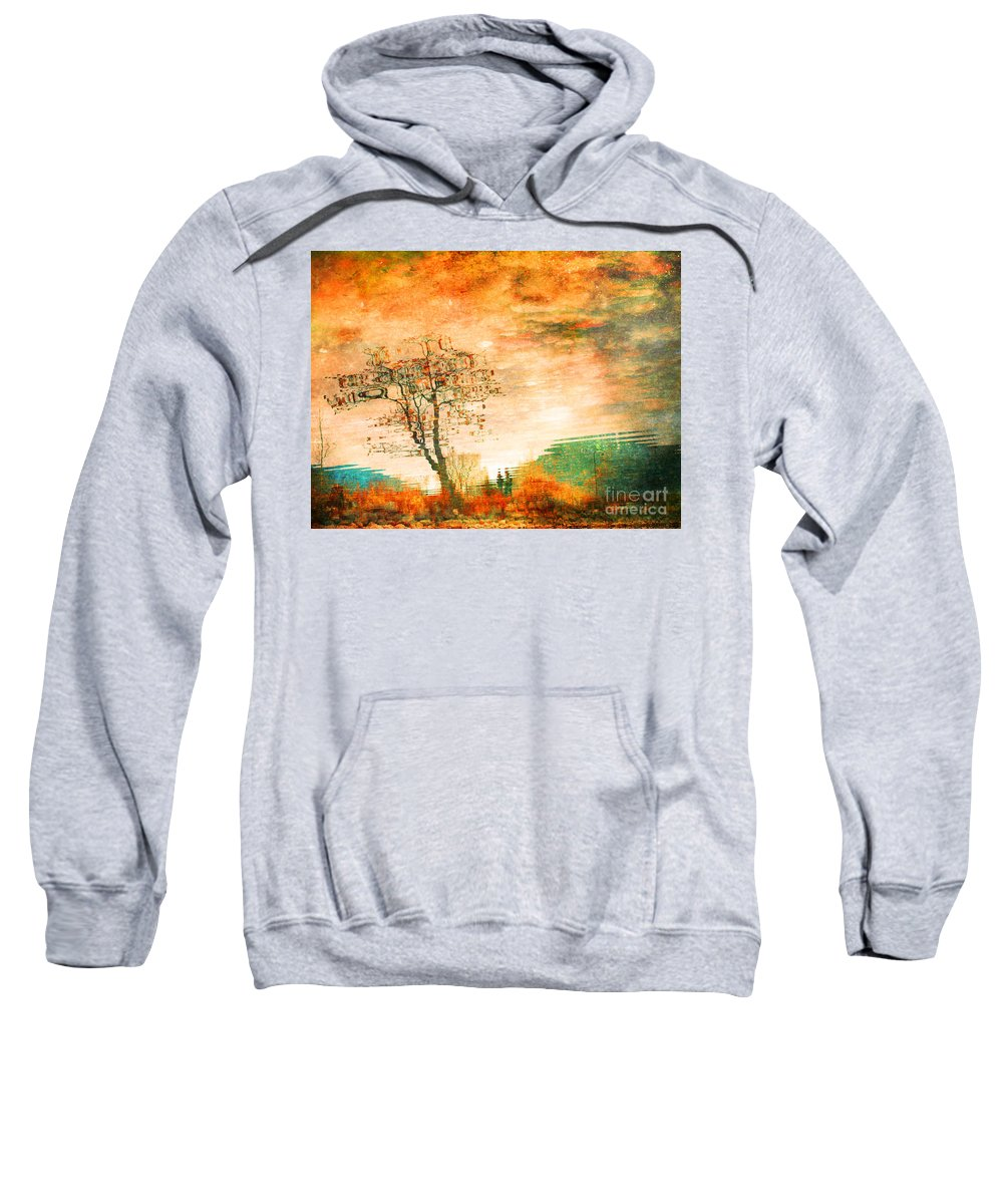Tree Sweatshirt featuring the photograph Funky Reflections by Tara Turner