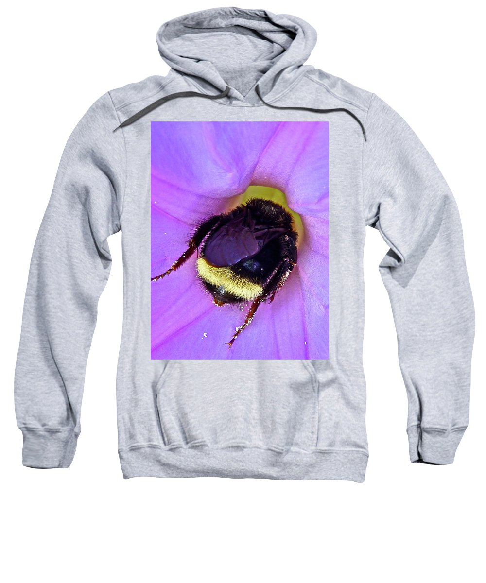 Insect Sweatshirt featuring the photograph Fur Skirt by Diana Hatcher