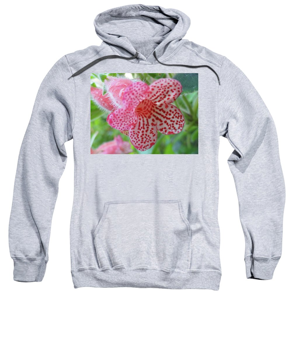 Flowers Sweatshirt featuring the photograph Furry Flora by Trish Hale