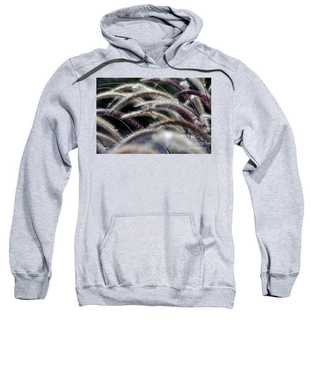 Clay Sweatshirt featuring the photograph Fuzzy by Clayton Bruster