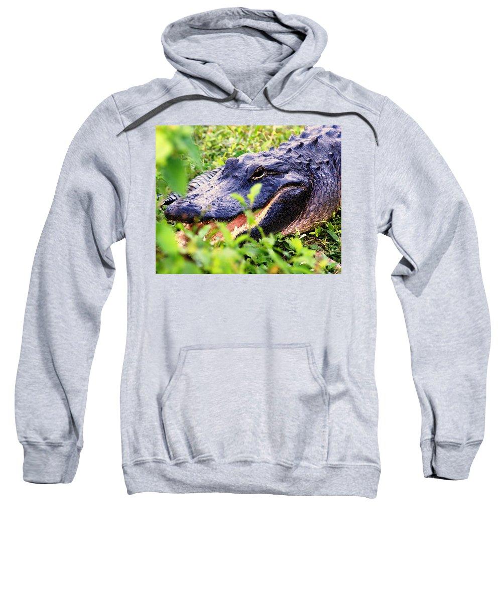 Aligator Sweatshirt featuring the photograph Gator 1 by Marty Koch