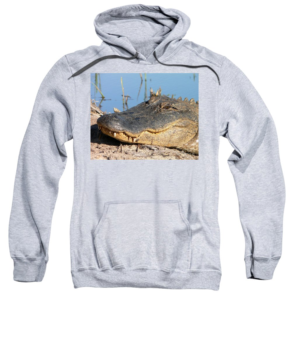 Alligator Sweatshirt featuring the photograph Gator Grin by Al Powell Photography USA