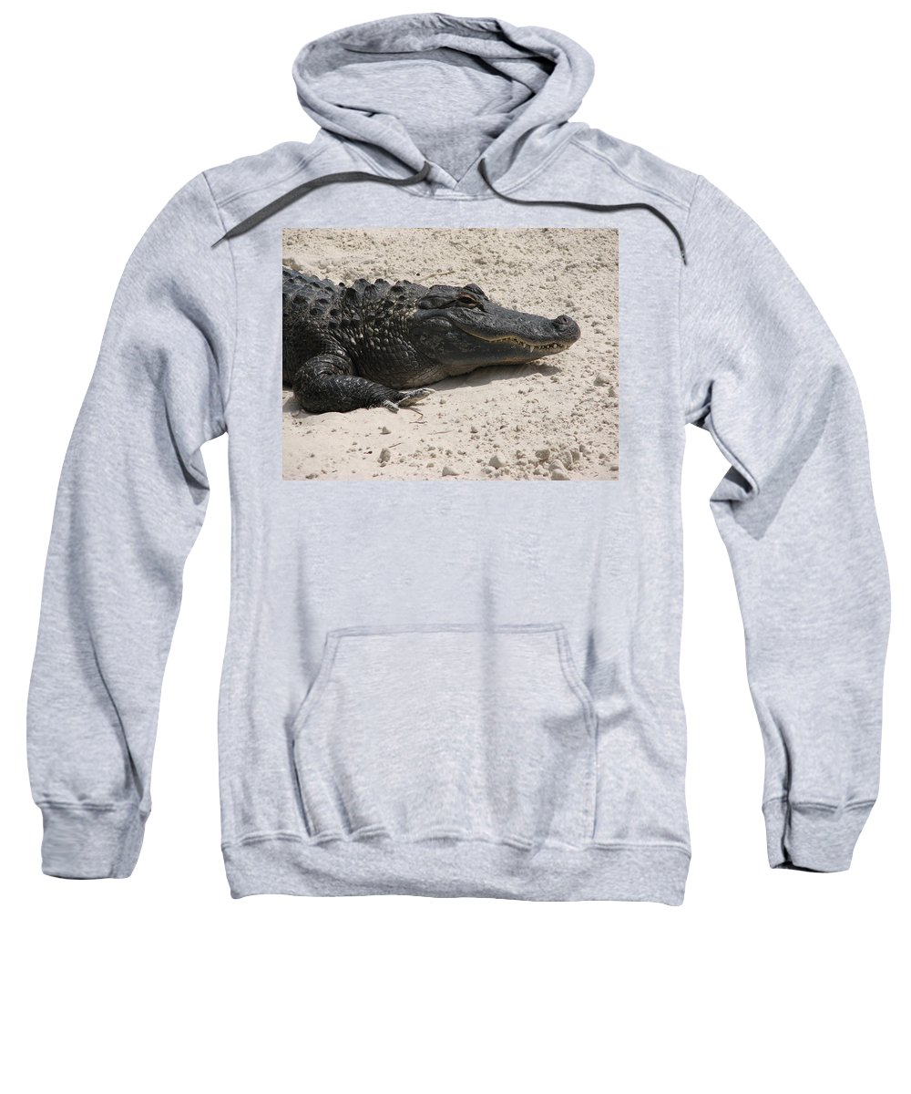 Alligator Sweatshirt featuring the photograph Gator II by Stacey May