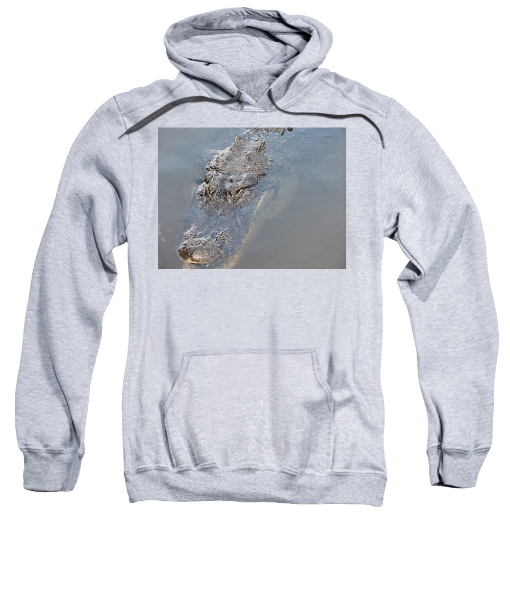 Alligator Sweatshirt featuring the photograph Gator IIi by Stacey May