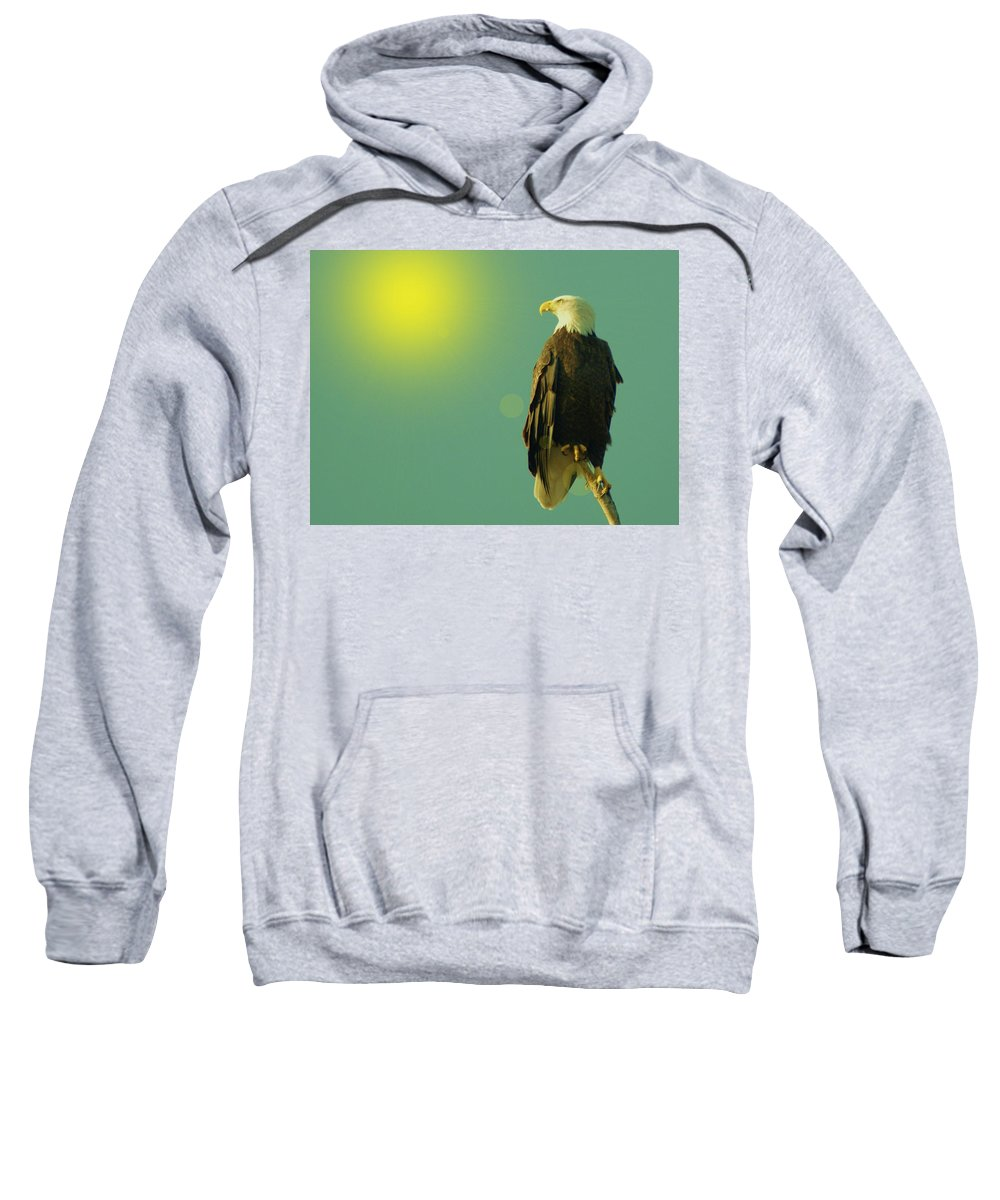 Eagles Sweatshirt featuring the photograph Gazing Sunward by Jeff Swan