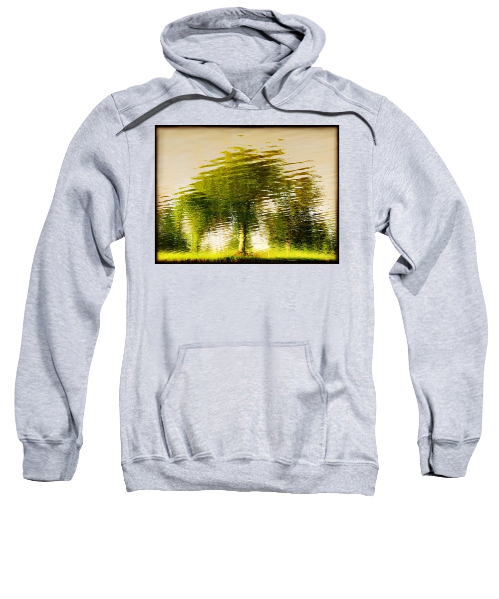 Abstract Sweatshirt featuring the photograph Gentle Sun by Dana DiPasquale