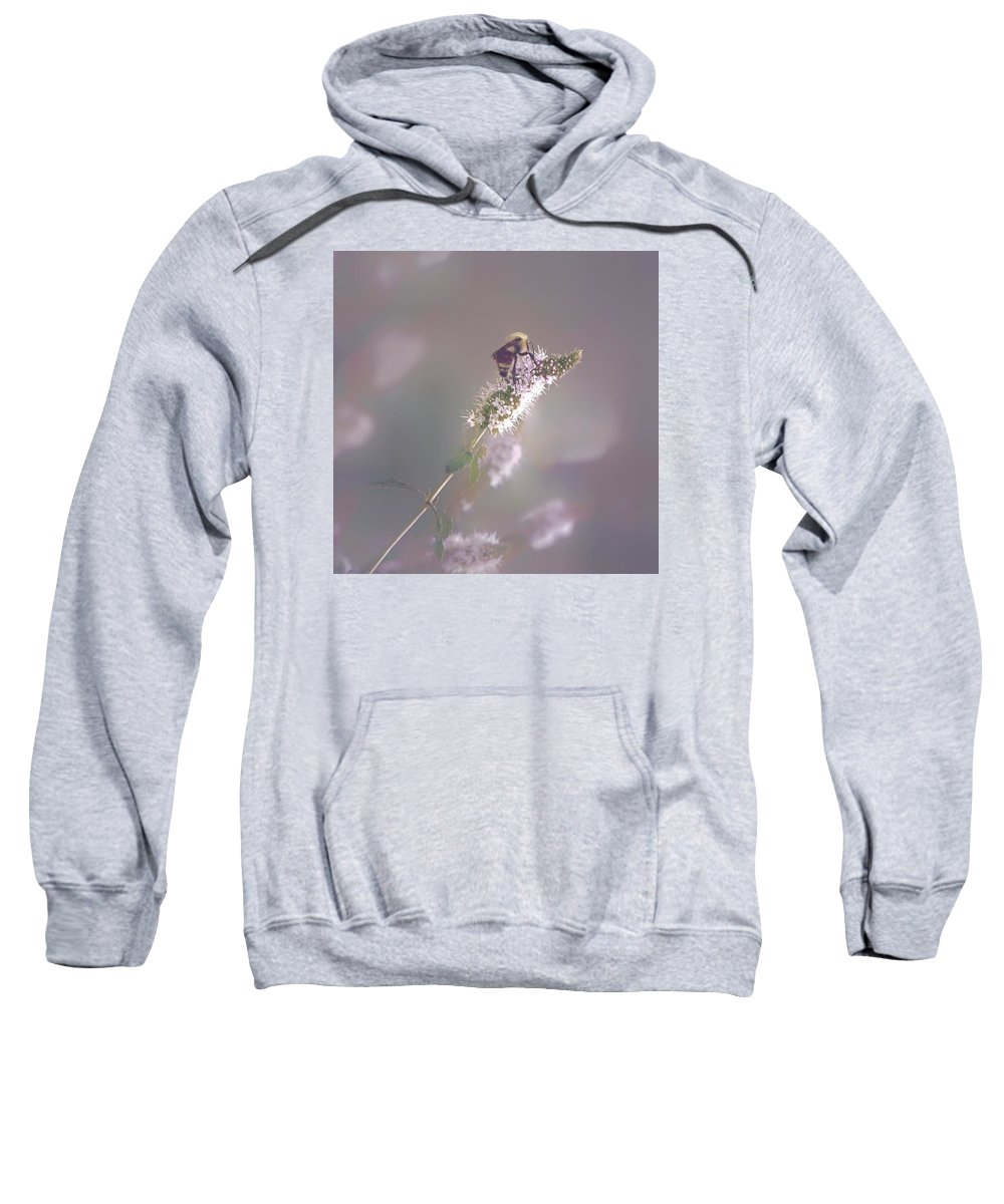 Bee Nature Flower Sweatshirt featuring the photograph Giddy-up by Becca Stauffer