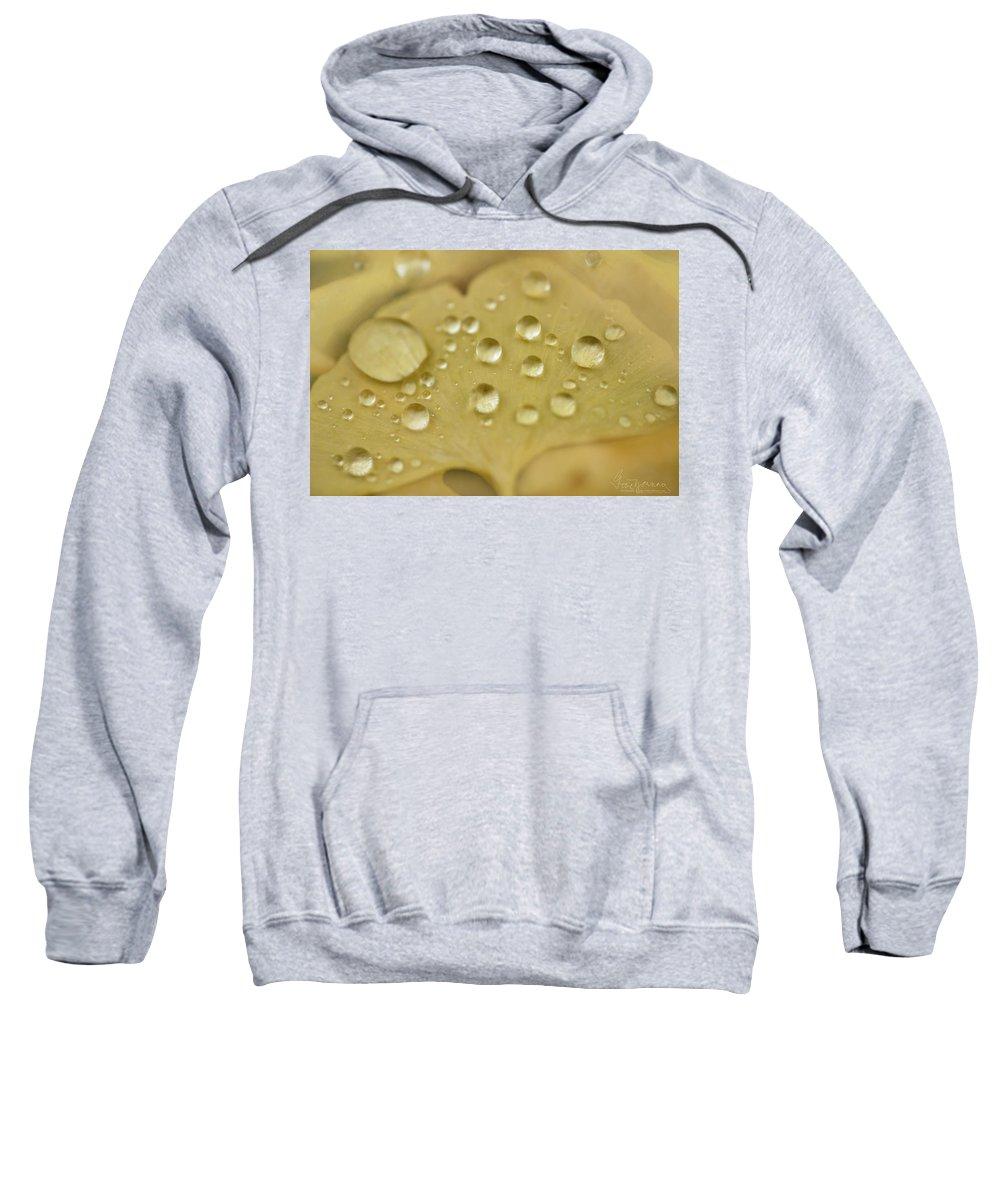 Macro Sweatshirt featuring the photograph Ginkgo Balls by Gene Garnace