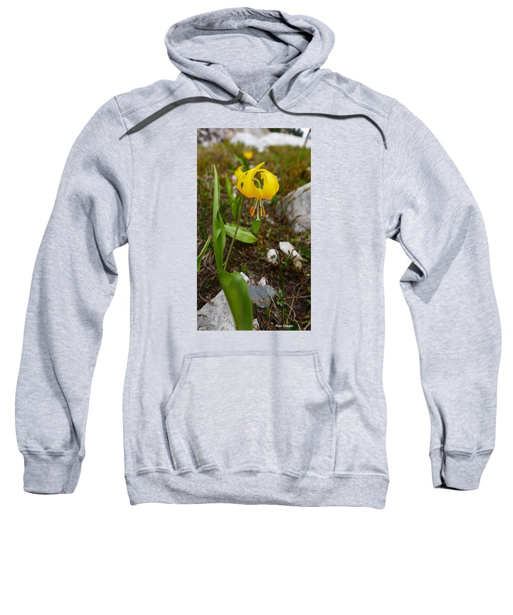 Ron Glaser Sweatshirt featuring the photograph Glacier Lily 1 by Ron Glaser