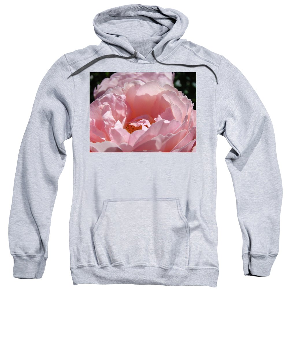 Rose Sweatshirt featuring the photograph Glowing Pink Rose Flower Giclee Prints Baslee Troutman by Baslee Troutman