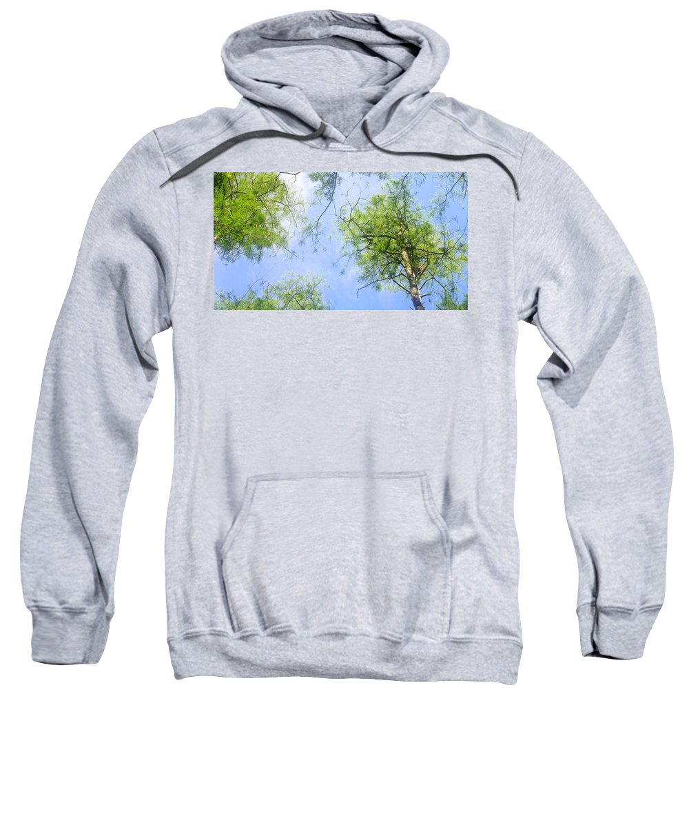 Sweatshirt featuring the photograph Glowing Trees by Jane Merrit