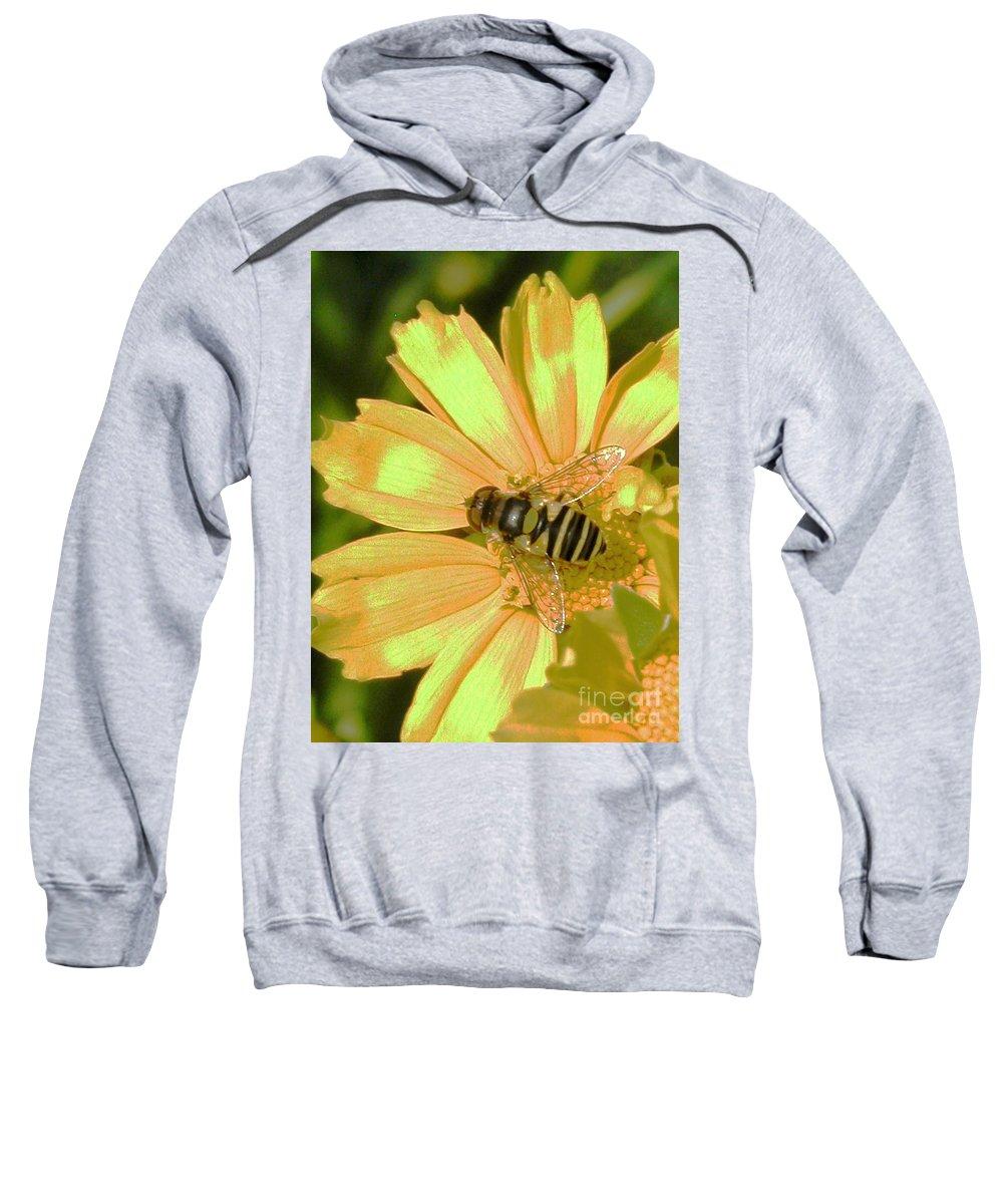 Bee Sweatshirt featuring the photograph Golden Bee by Karol Livote