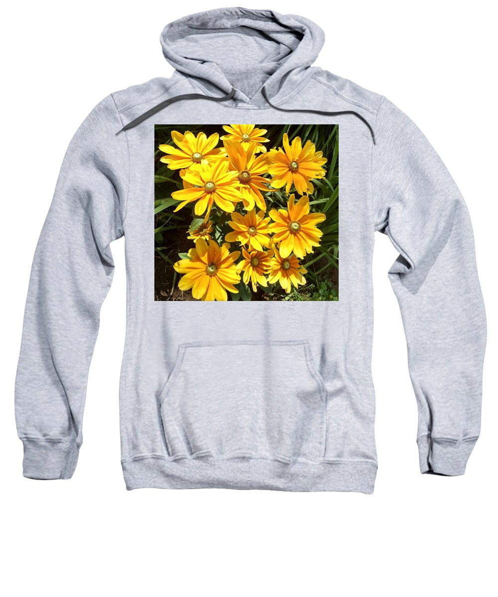 Blooms Sweatshirt featuring the photograph Golden Eyed Susans by Jennifer Kohler