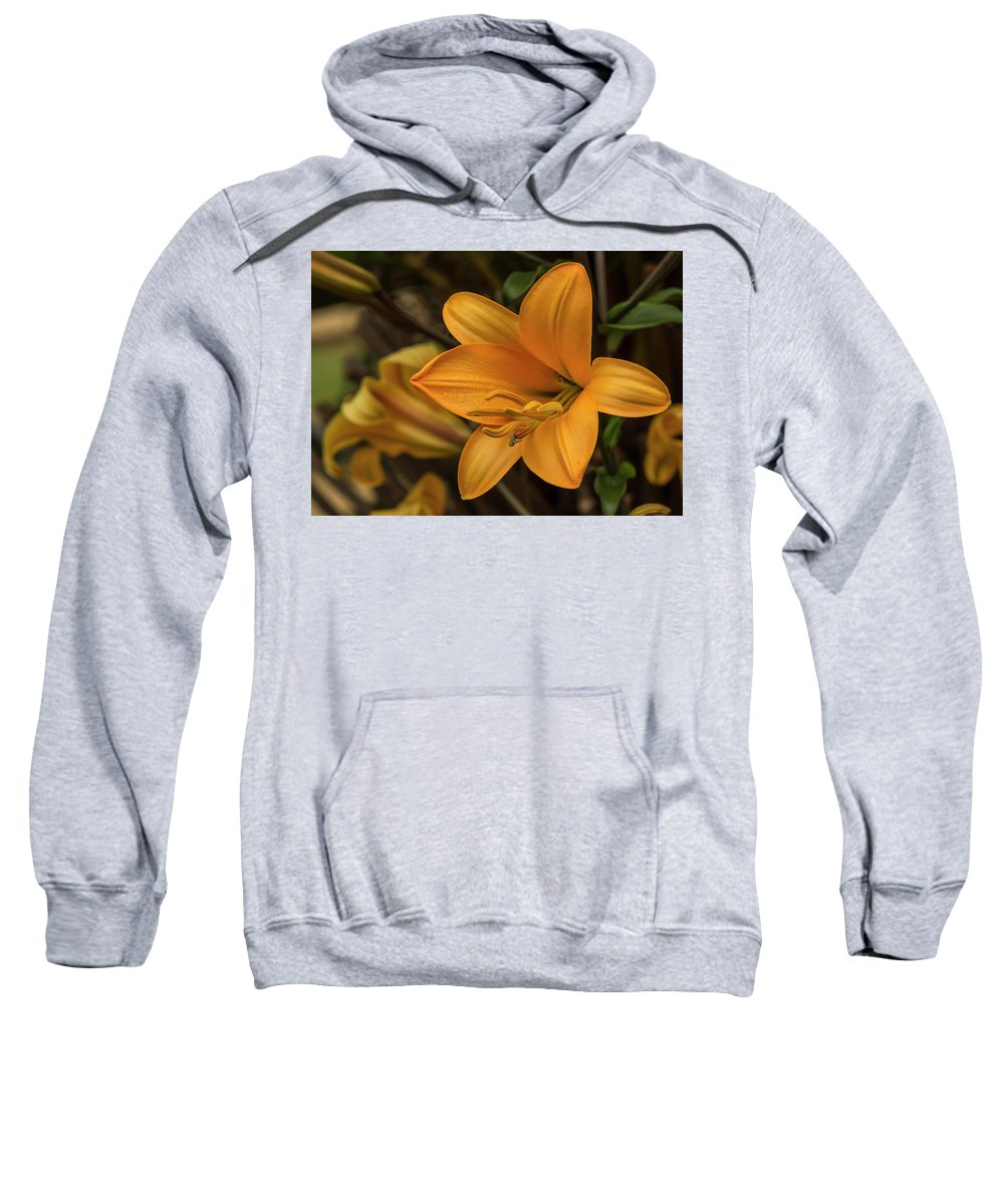 Flower Sweatshirt featuring the photograph Golden Lilies by Bruce Frye