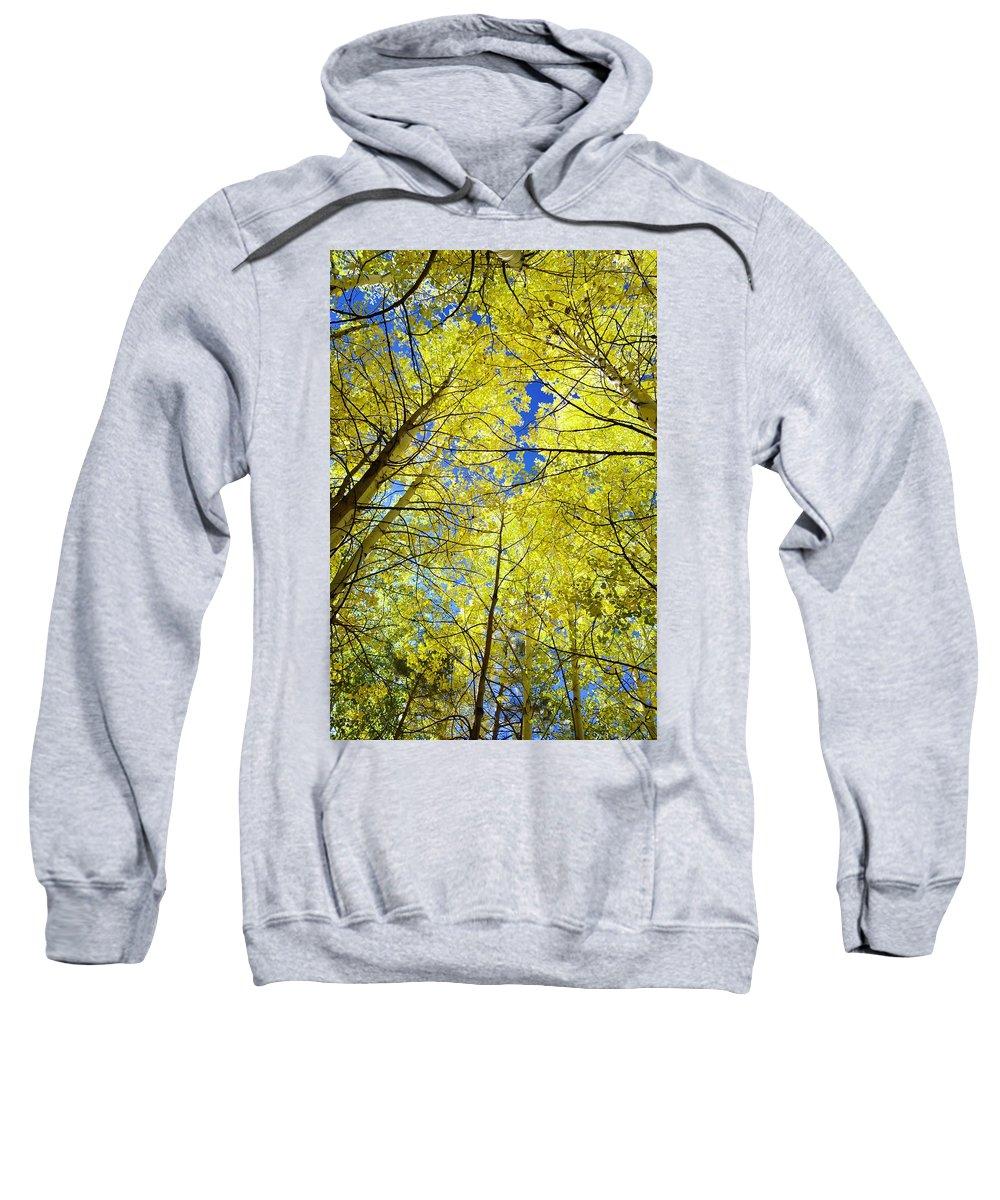 Sky Sweatshirt featuring the photograph Golden Sky by Barbara Stellwagen