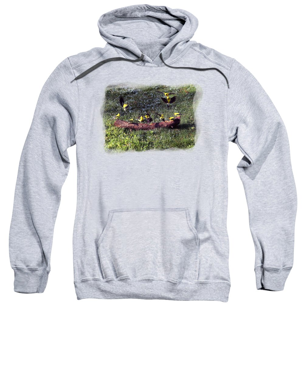 Canary Sweatshirt featuring the photograph Goldfinch Convention by Nick Kloepping