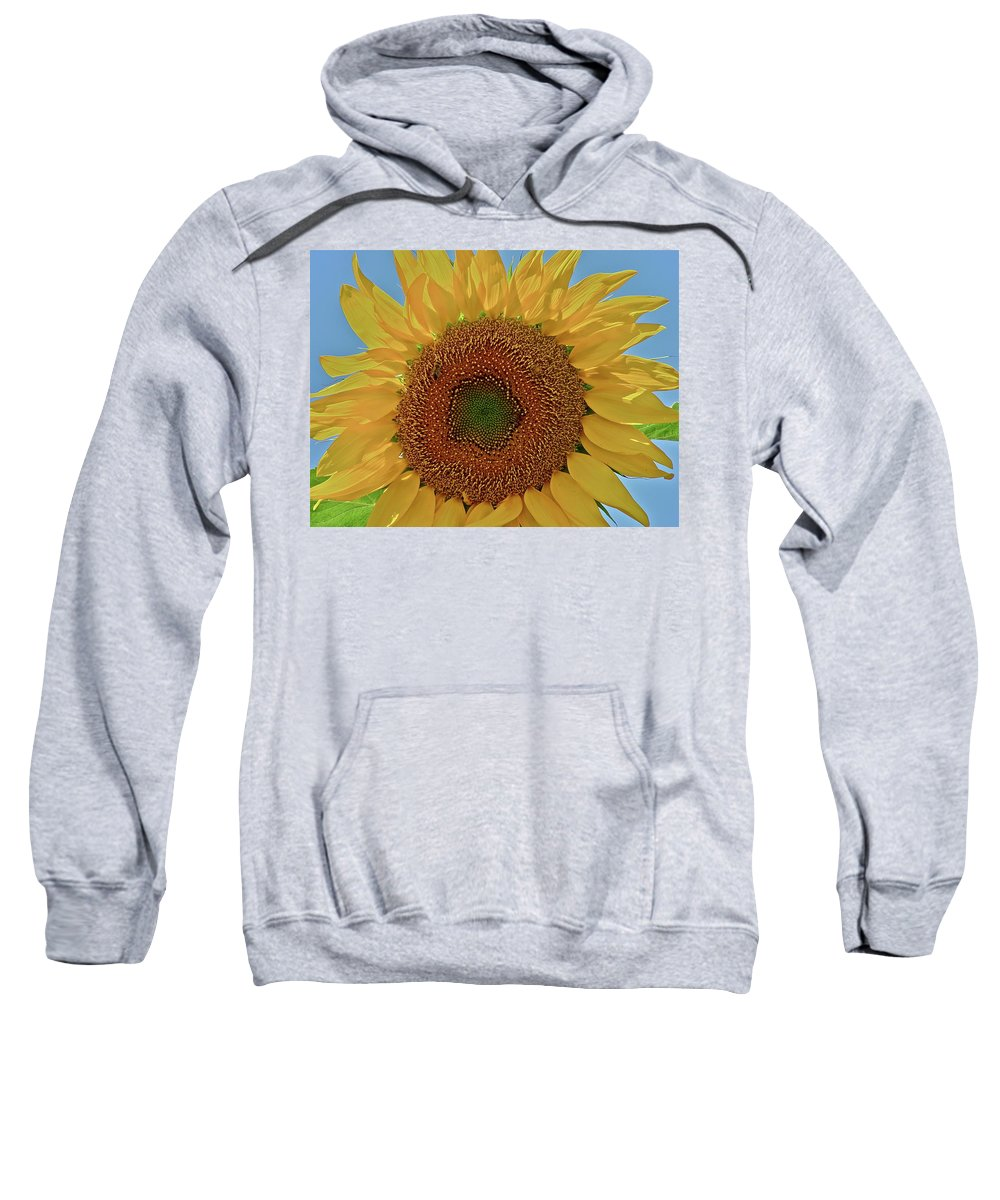 Flower Sweatshirt featuring the photograph Good Morning by Diana Hatcher