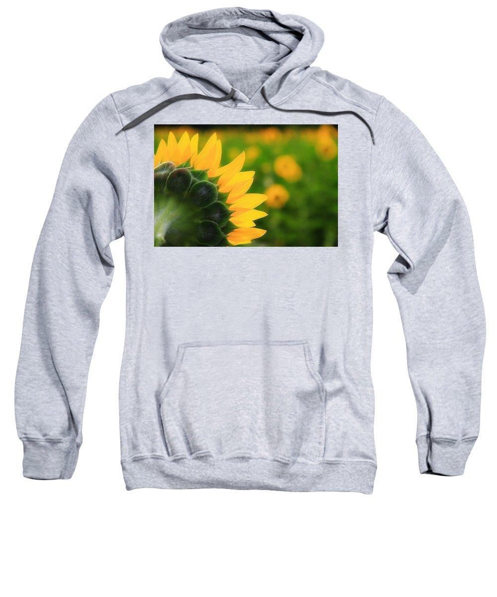 Sunflower Flower Petals Yellow Sweatshirt featuring the photograph Good Morning Fellas by Scott Bolden