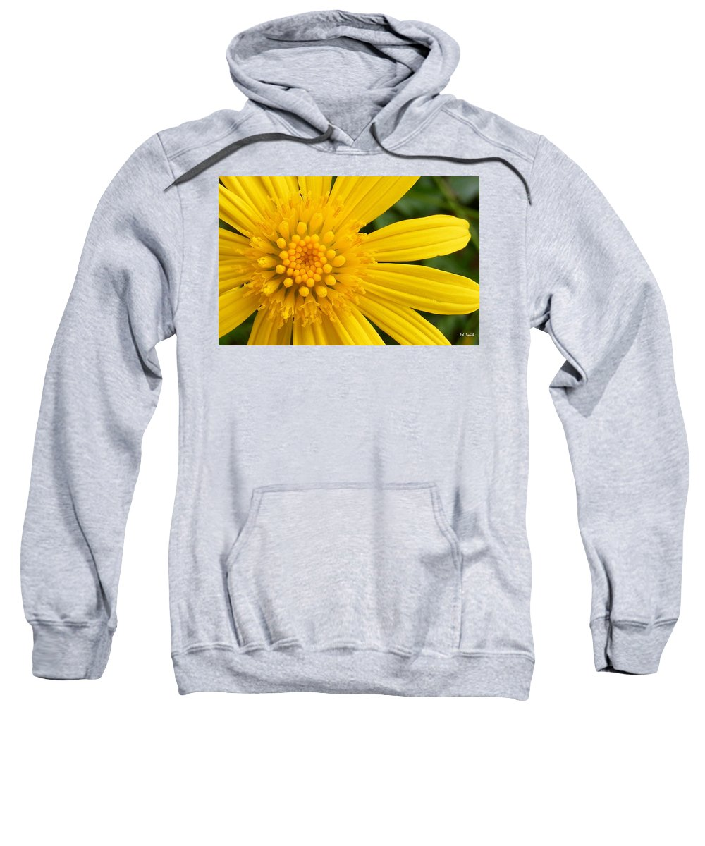 Good Morning Sunshine Sweatshirt featuring the photograph Good Morning Sunshine by Ed Smith