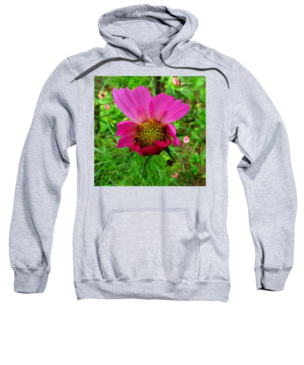 Wild Flower Sweatshirt featuring the photograph Good Morning World by Donna Brown