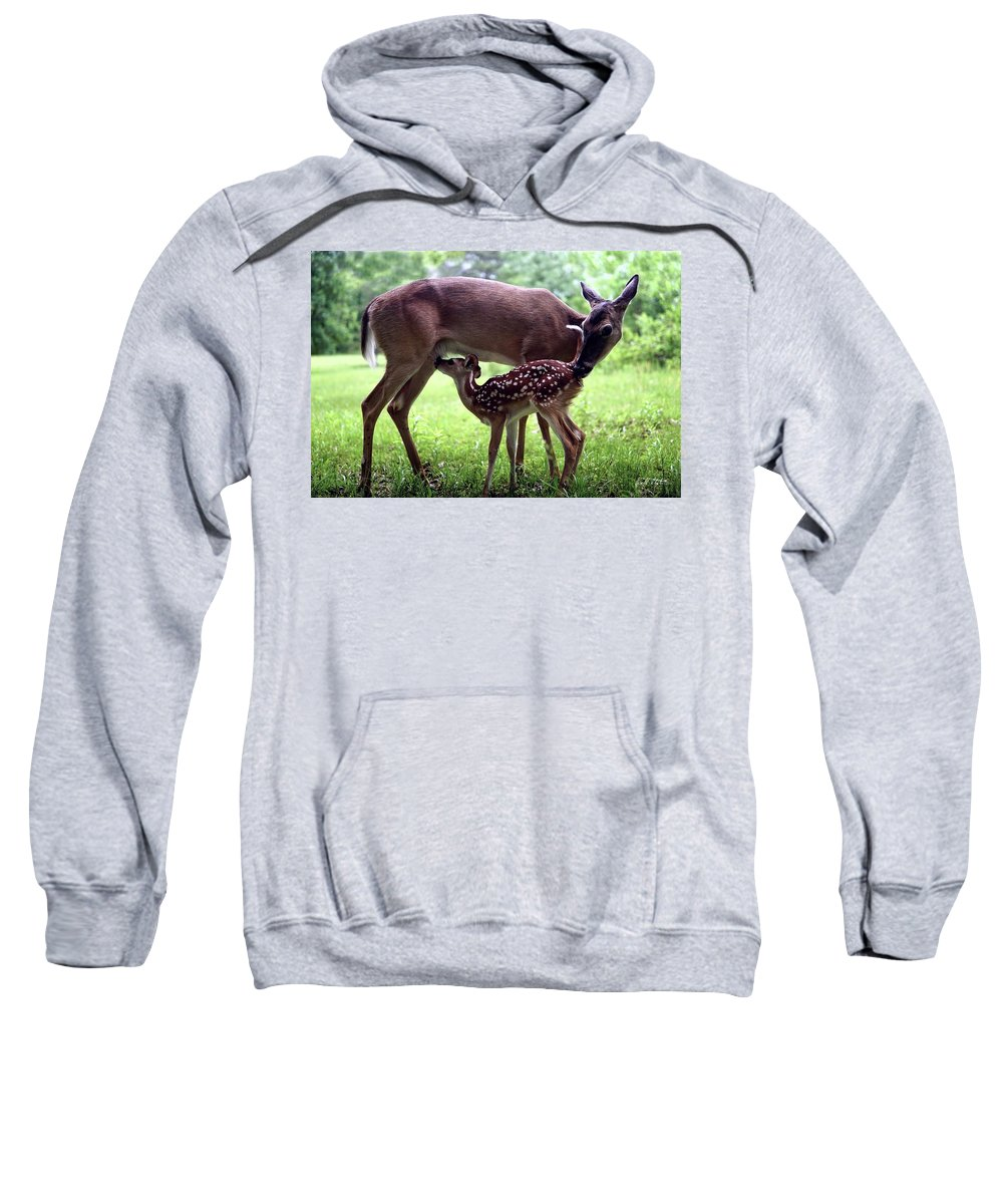 Deer Sweatshirt featuring the photograph Gracie Nursing Lexi by Bill Stephens