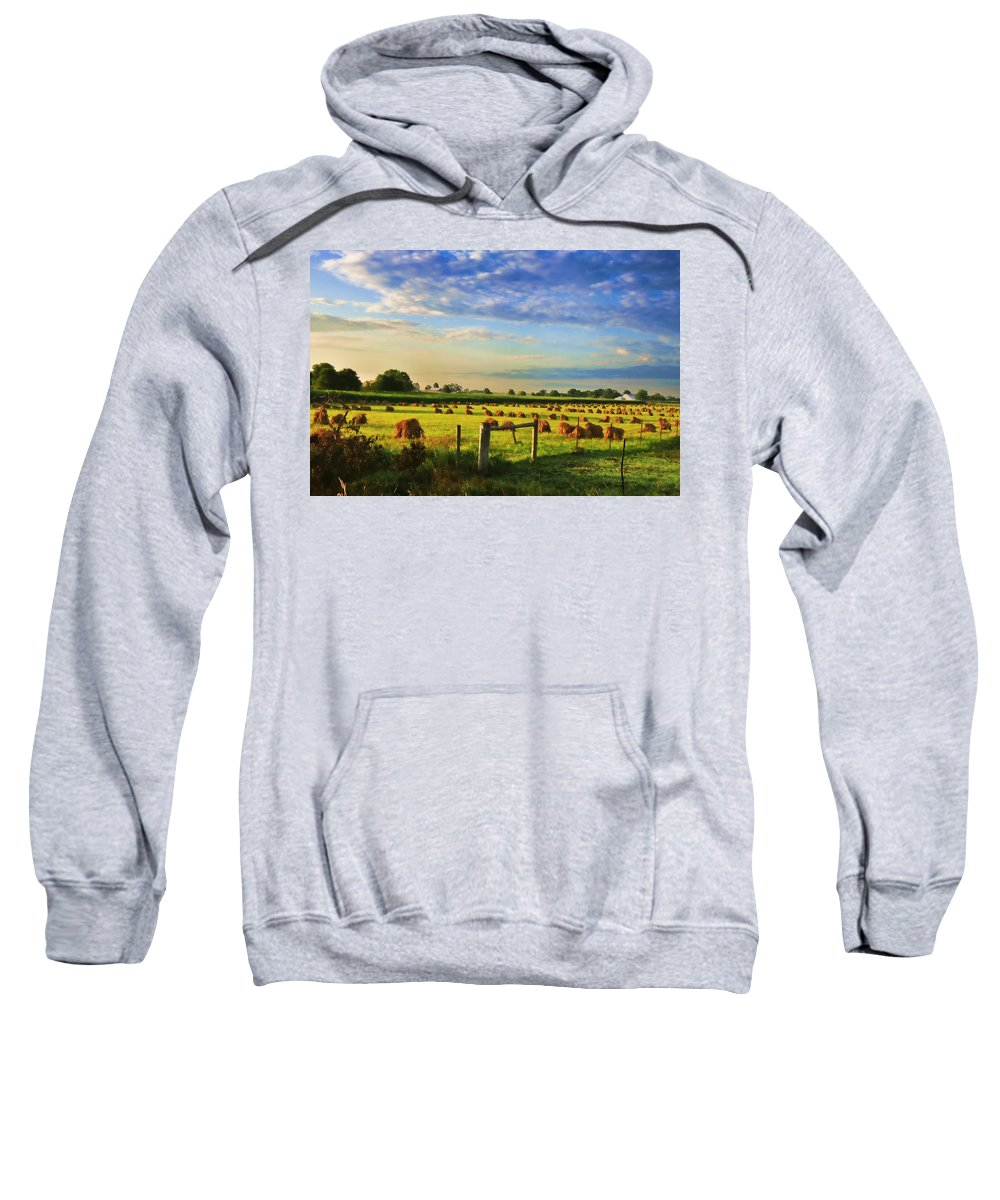 Amish Sweatshirt featuring the photograph Grain In The Field by David Arment