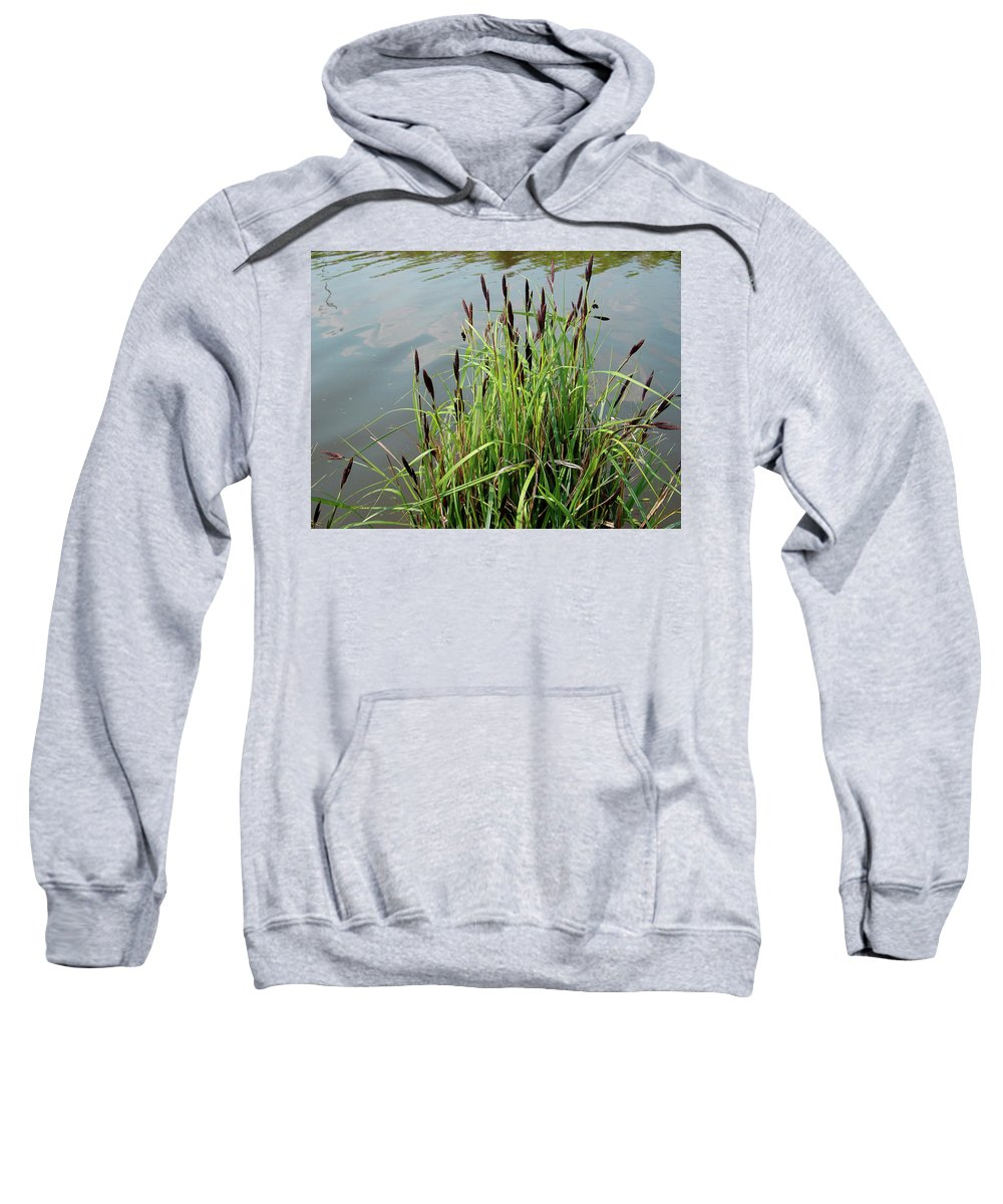 Outdoors Sweatshirt featuring the photograph Grasses With Seed Heads by Rod Johnson
