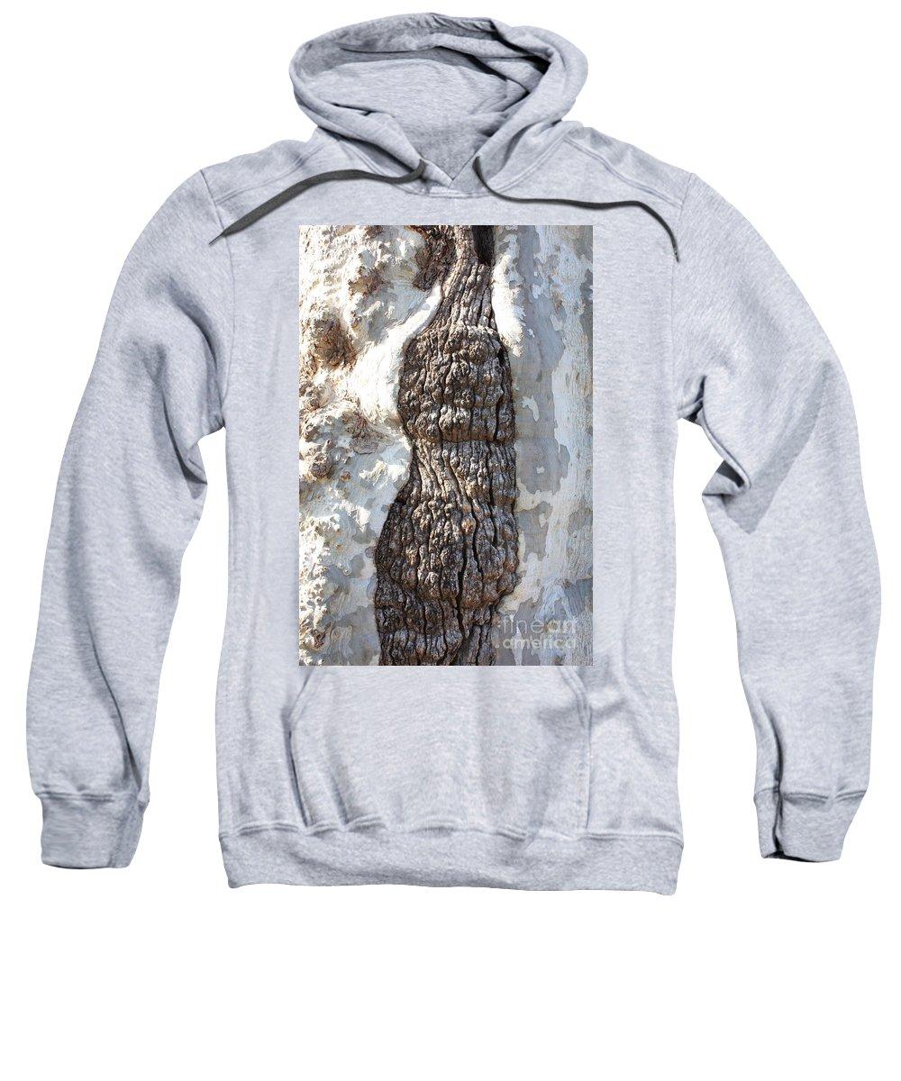 Gray Bark Sweatshirt featuring the photograph Gray Bark Abstract by Carol Groenen