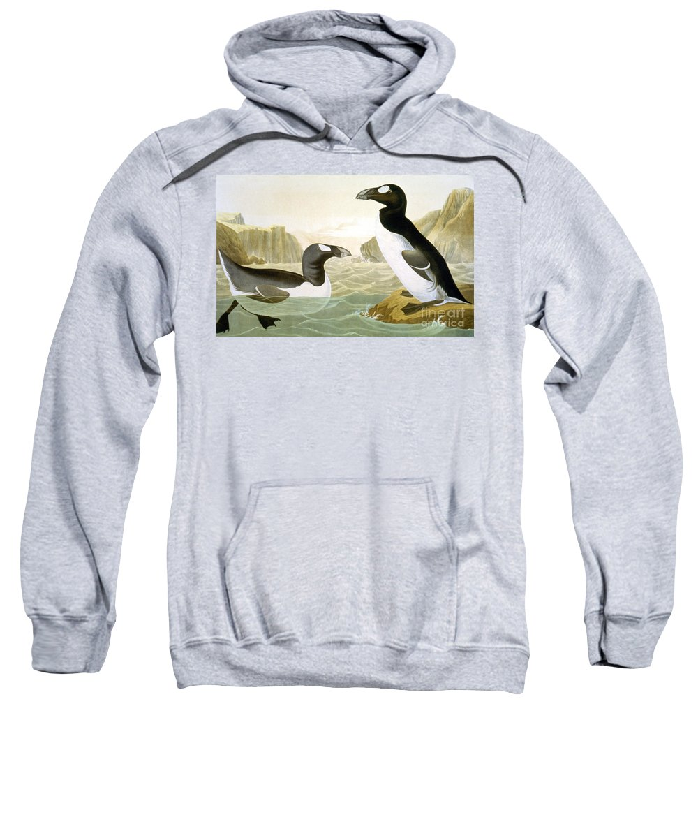 1858 Sweatshirt featuring the photograph Great Auk (alka Impennis): by Granger