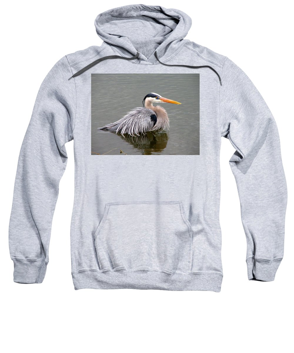Bird Sweatshirt featuring the photograph Great Blue Heron 3 by J M Farris Photography
