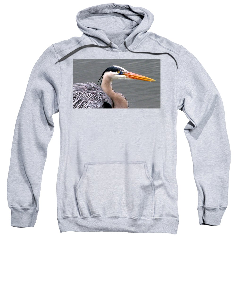 Bird Sweatshirt featuring the photograph Great Blue Heron 5 by J M Farris Photography