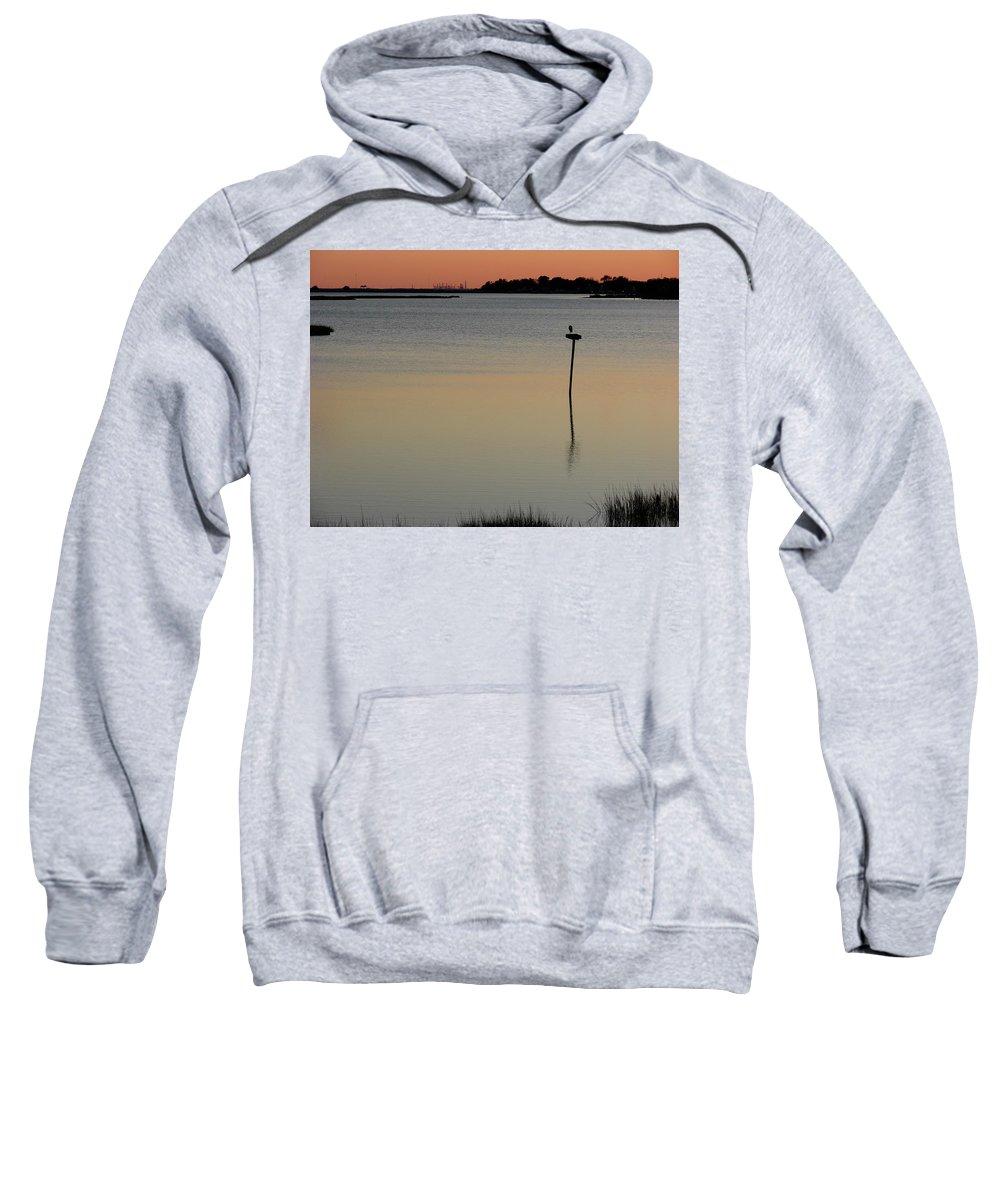 Hampton Sweatshirt featuring the photograph Great Blue Heron II by Brett Winn