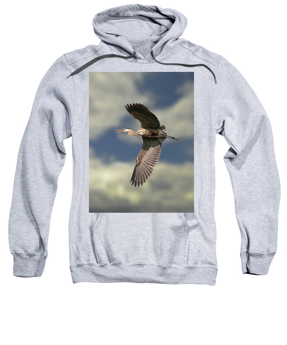 Blue Heron Sweatshirt featuring the photograph Great Blue Heron by Michael Cummings