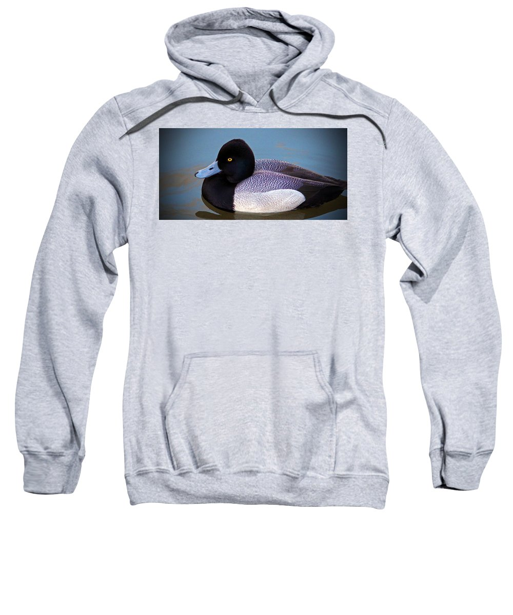 Duck Sweatshirt featuring the photograph Greater Scaup by Cynthia Guinn