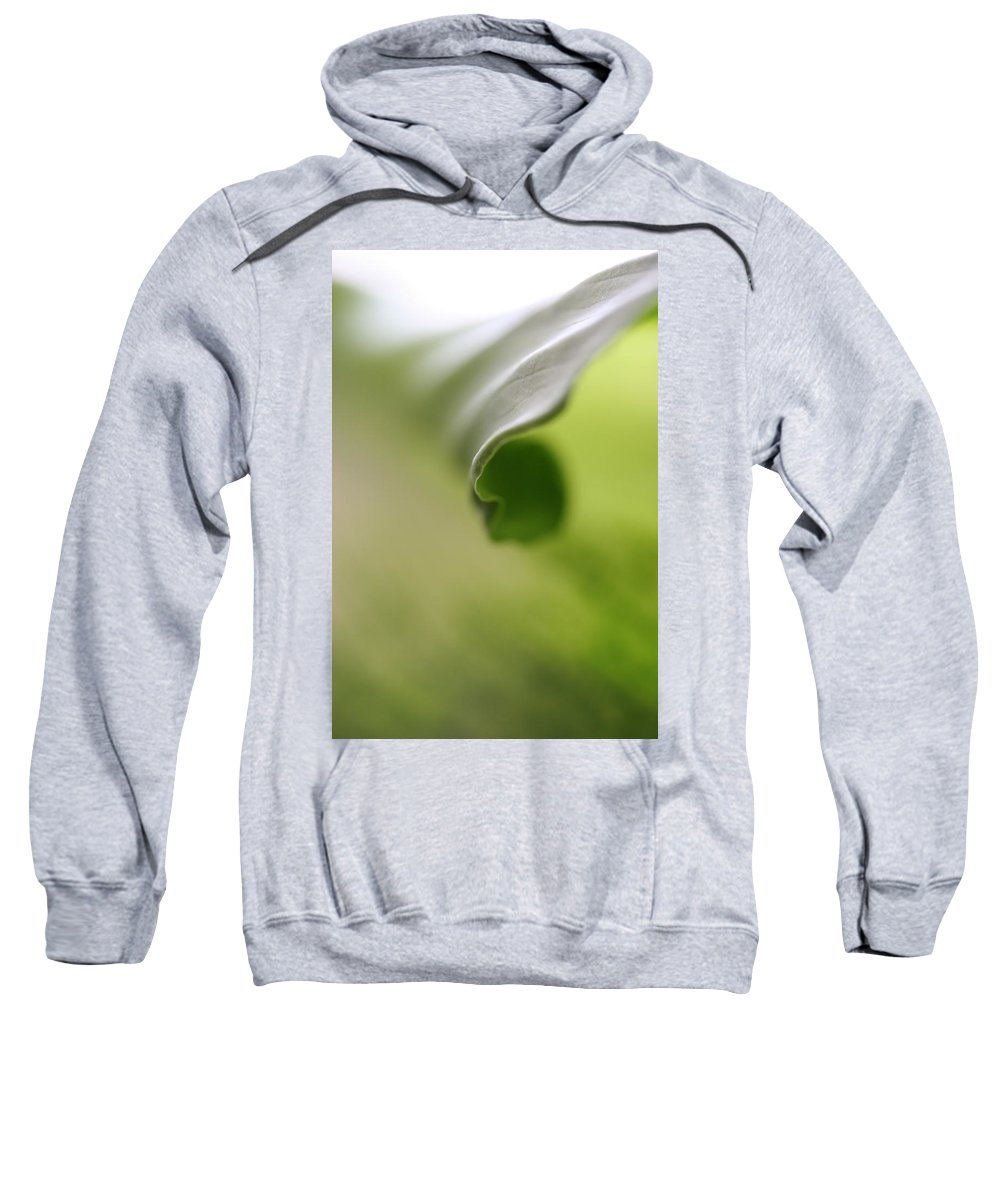 Nature Plants Photography Botanica Leaf Sweatshirt featuring the photograph Green Chakra by Norah Holsten