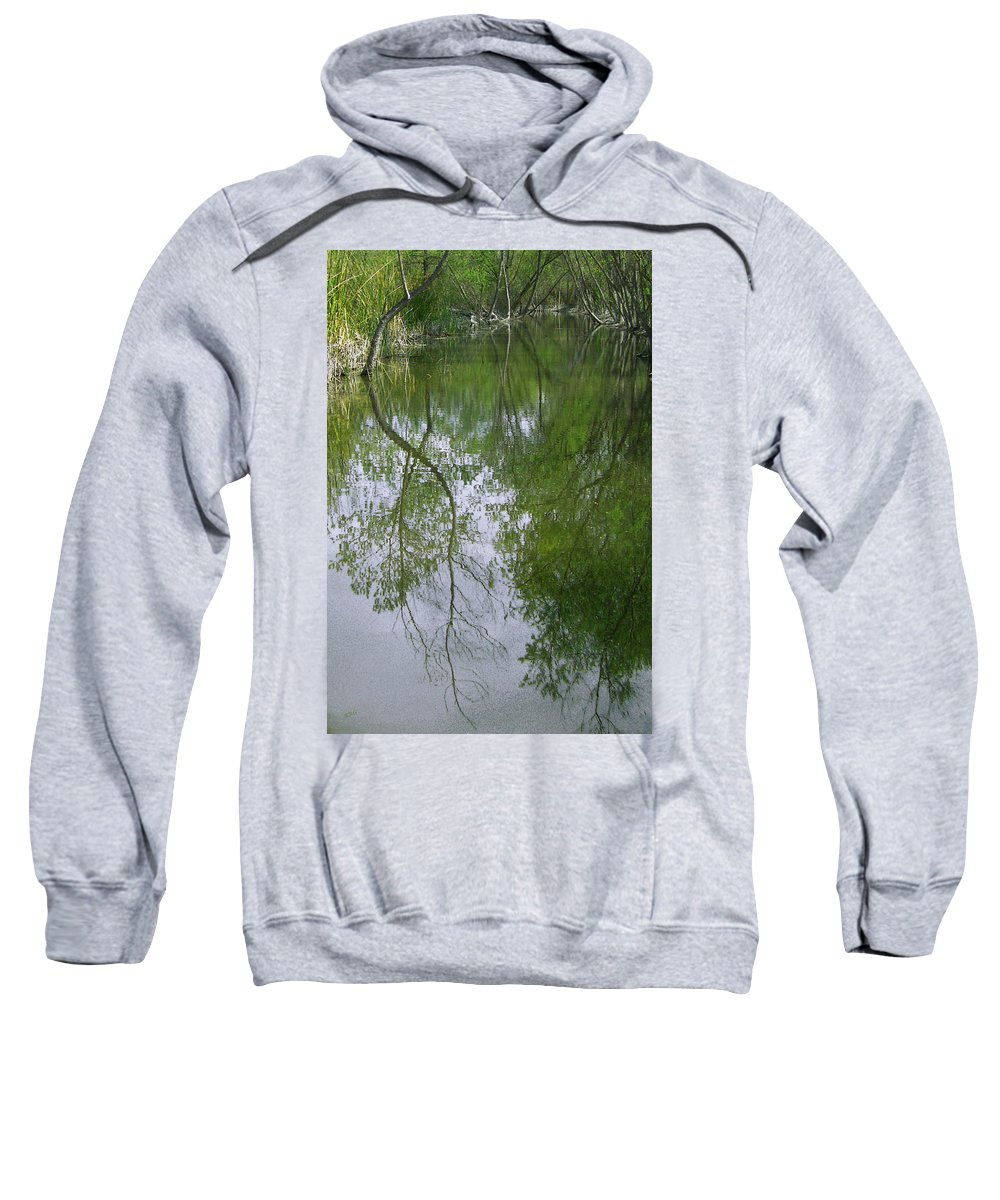 Tree Reflection Sweatshirt featuring the photograph Green Peace - Trees Reflection by Ben and Raisa Gertsberg