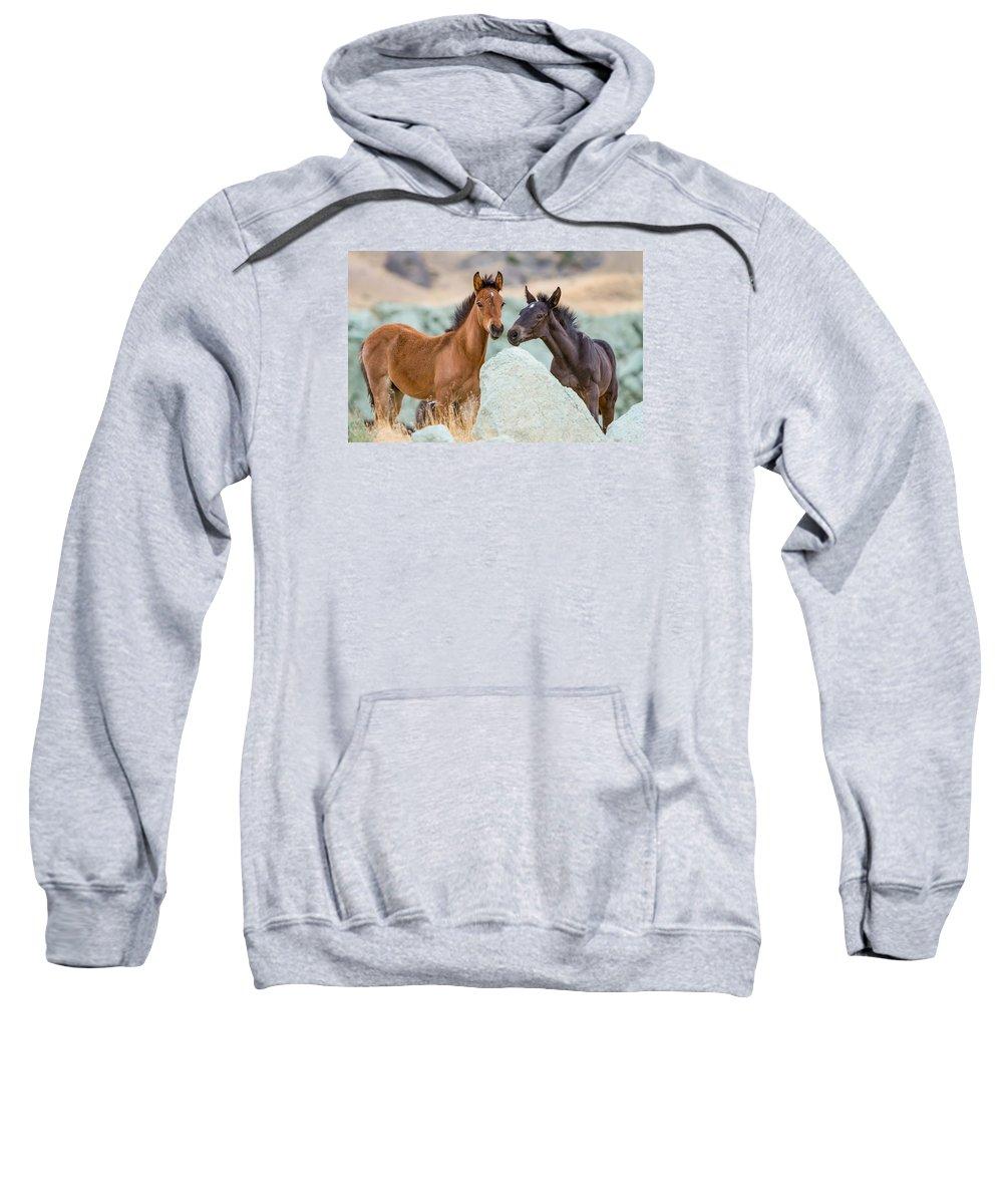 Wild Horse Sweatshirt featuring the photograph Green Rock Quarry by Kent Keller