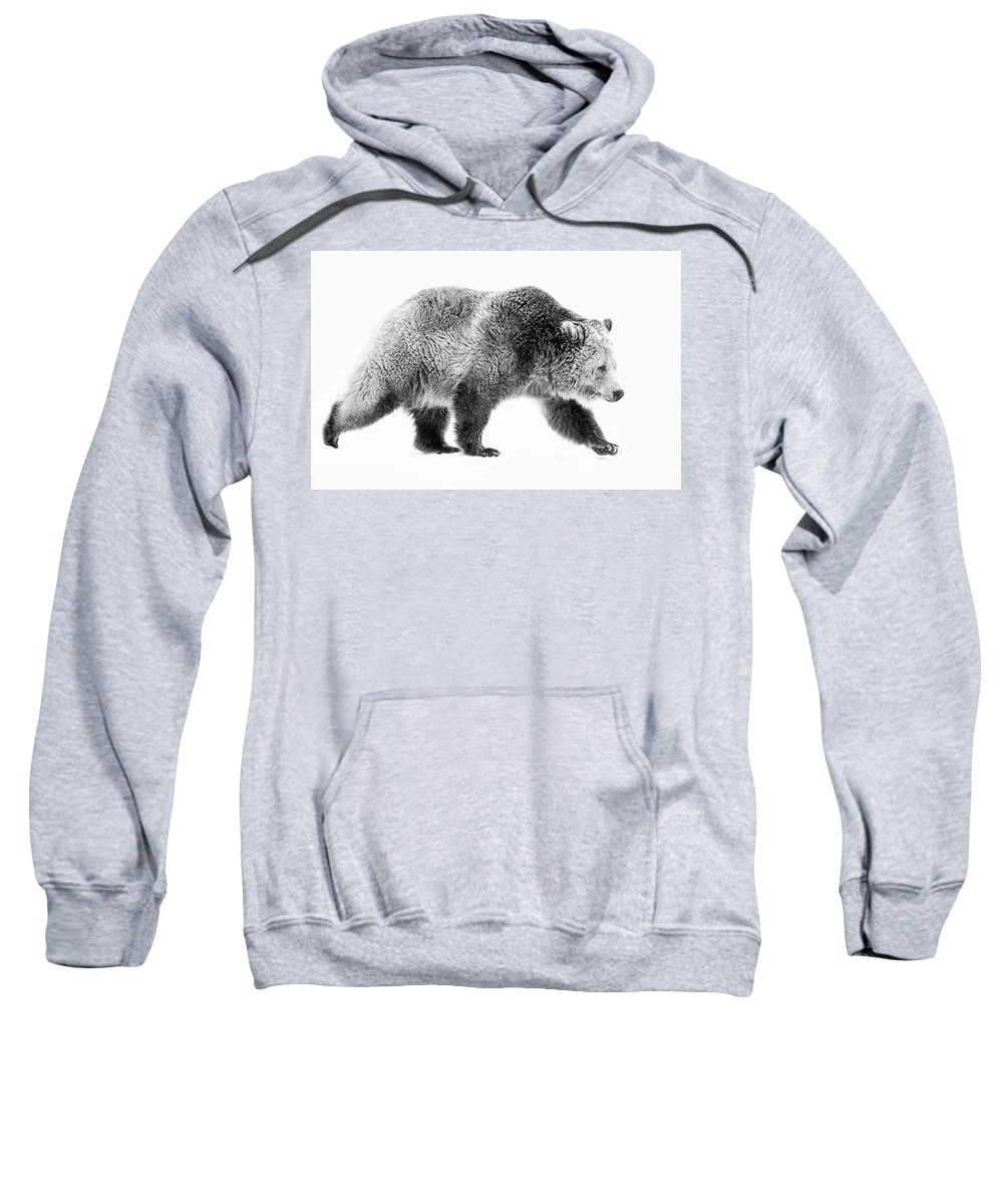 Grizzly Sweatshirt featuring the photograph Griz On The Run by Athena Mckinzie