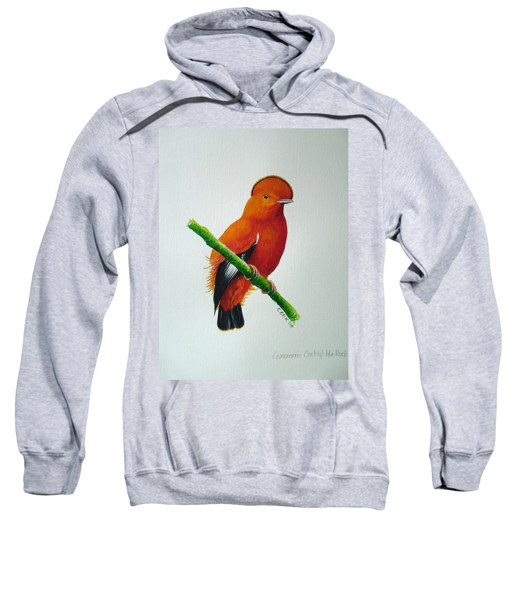 Cock-of-the-rock Sweatshirt featuring the painting Guianan Cock-of-the-rock by Christopher Cox