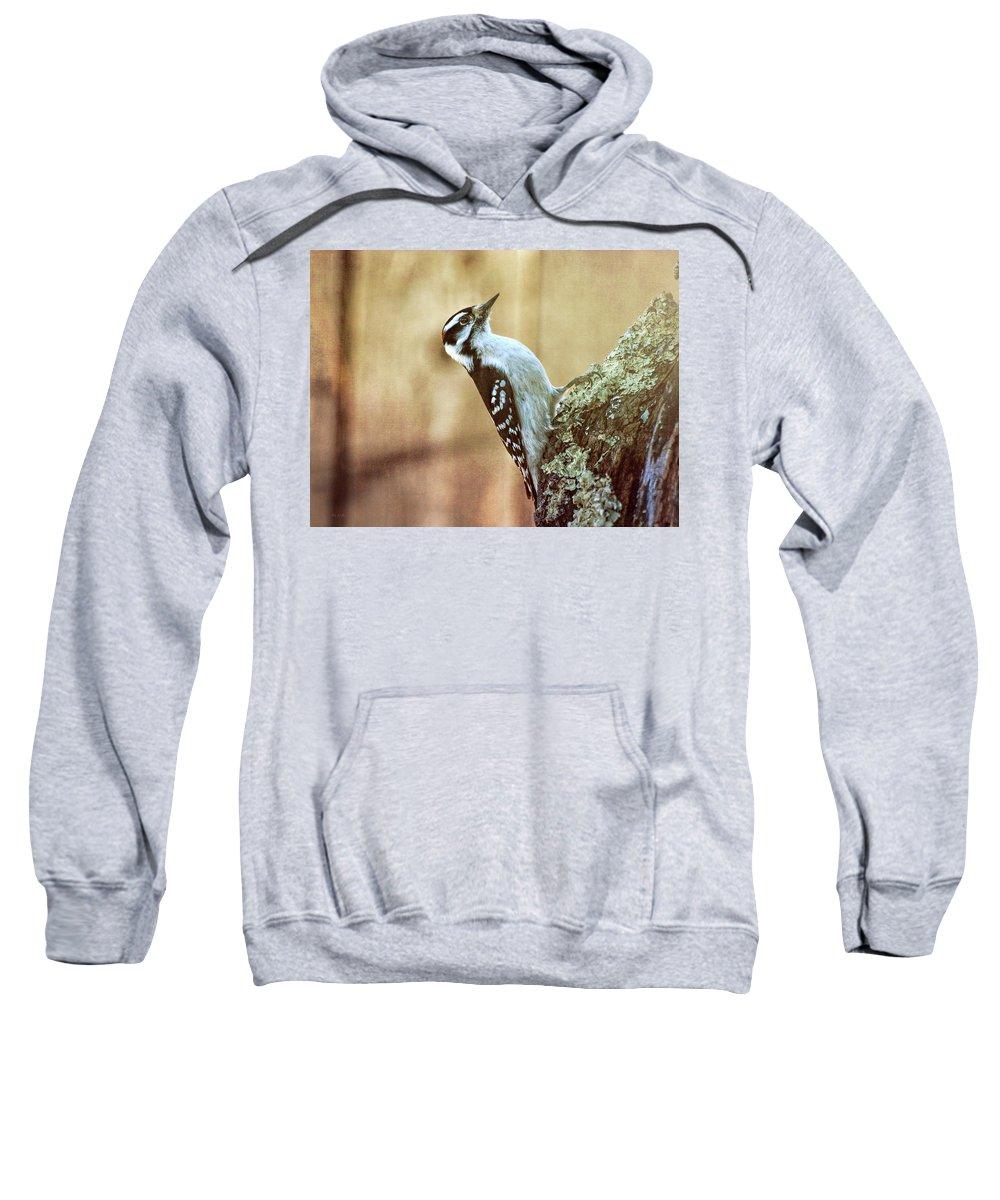 Hairy Woodpecker Sweatshirt featuring the photograph Hairy Woodpecker by Bob Orsillo