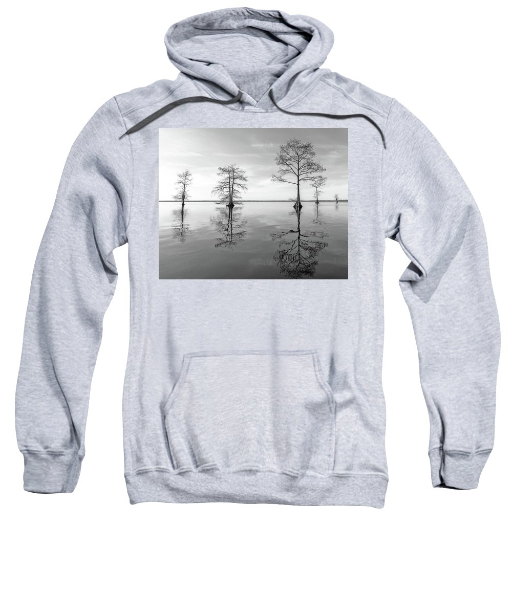 Tree Sweatshirt featuring the photograph Half by Alan Raasch
