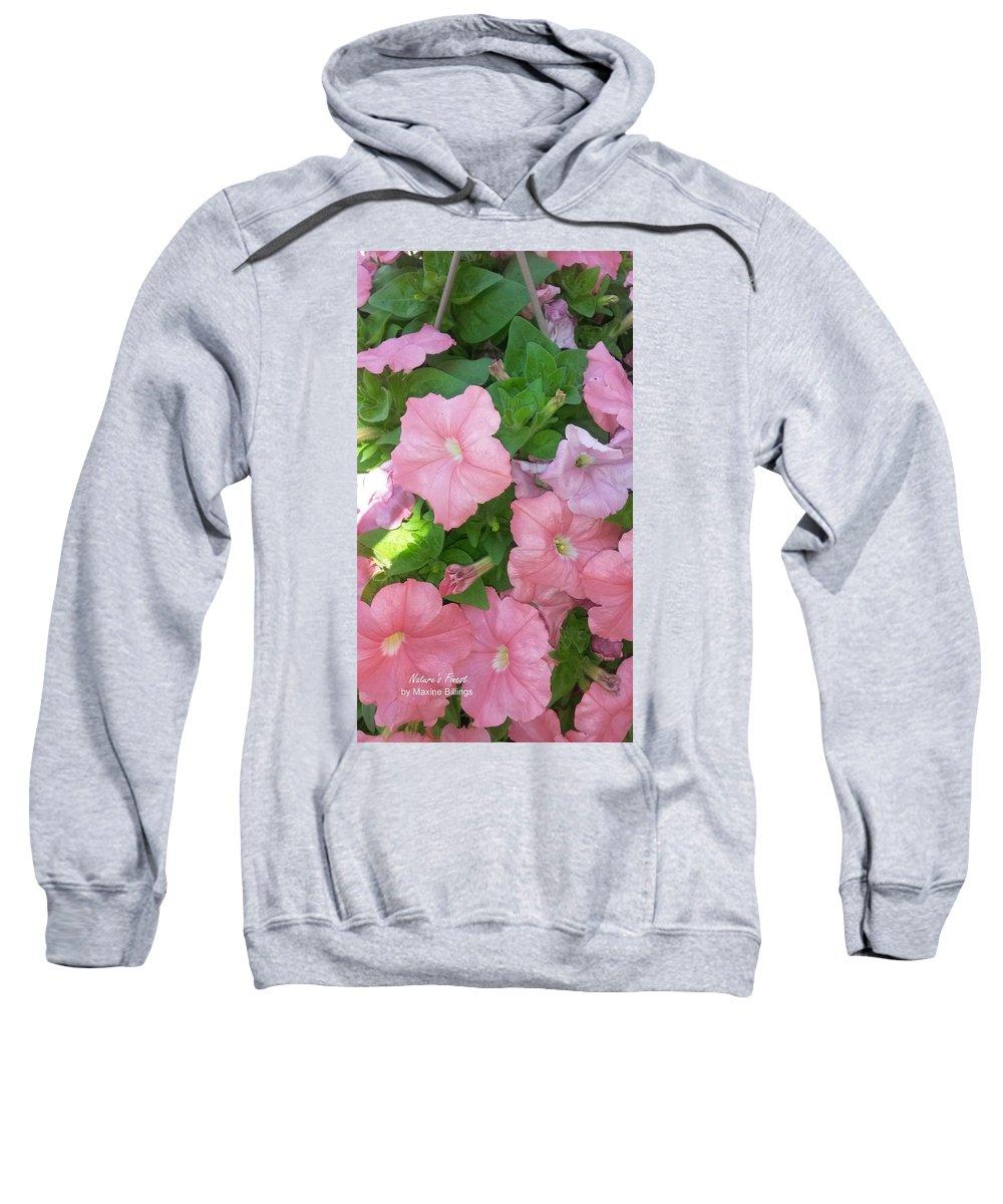 Petunias Sweatshirt featuring the photograph Hanging Pink Petunias Basket by Maxine Billings