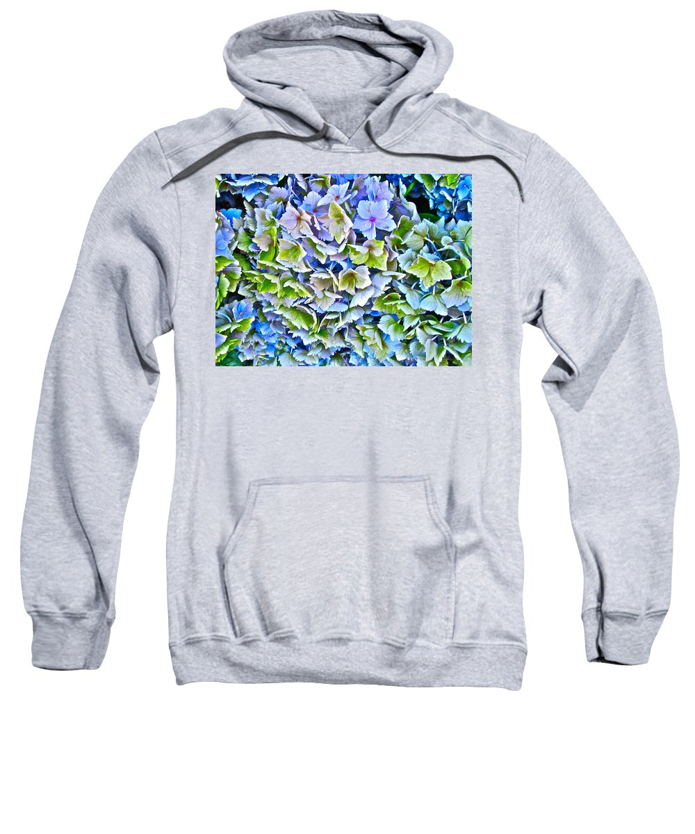 Photograph Of Hydrangea Sweatshirt featuring the photograph Hanson Hydrangea by Gwyn Newcombe