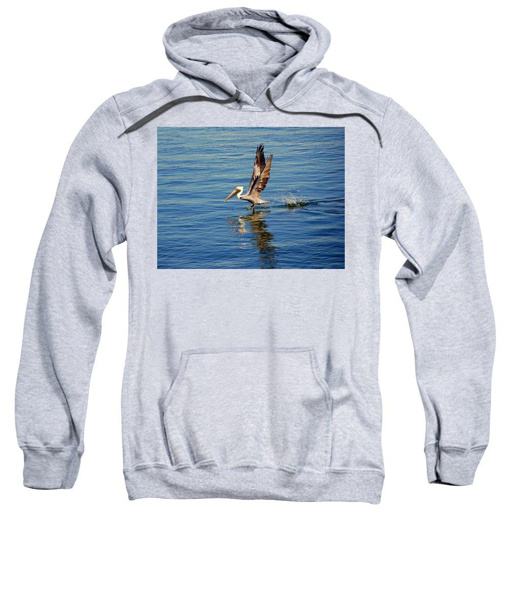 Pelican Sweatshirt featuring the photograph Happy Landing Pelican by Susanne Van Hulst
