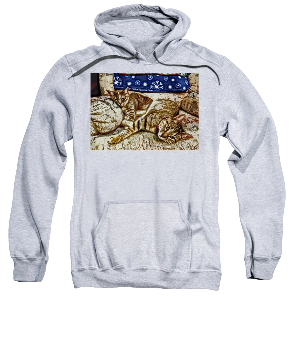 Cat Sweatshirt featuring the photograph Happy Together by David G Paul
