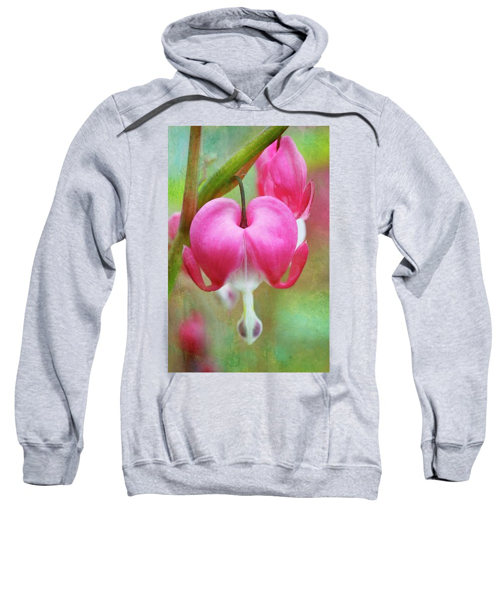 Happy Sweatshirt featuring the photograph Happy Valentine's Day by Marilyn Hunt