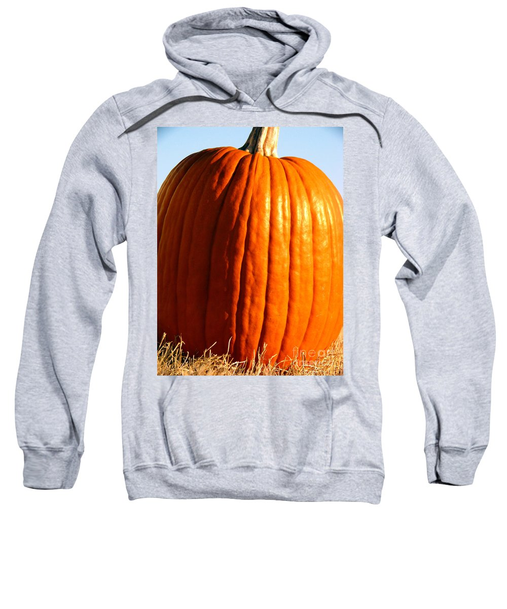 Pumpkin Sweatshirt featuring the photograph Harvest by Amanda Barcon
