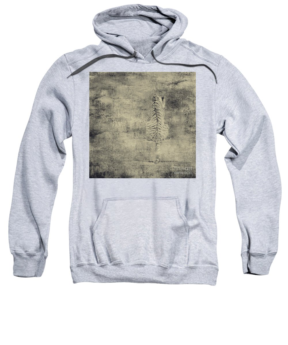 Dipasquale Sweatshirt featuring the photograph Have You Comprehended... by Dana DiPasquale