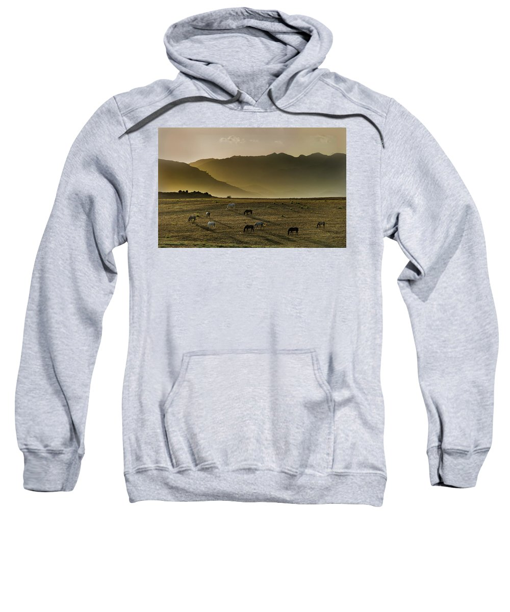 Animal Sweatshirt featuring the photograph Heading Home In The Evening by Peter Hayward Photographer