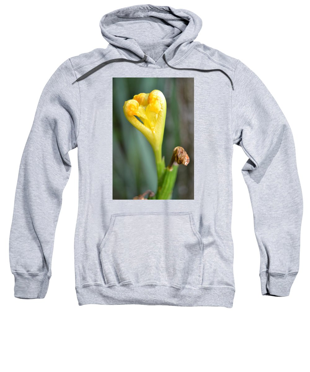 Iris Sweatshirt featuring the photograph Heart Of Iris by Denise Jakob